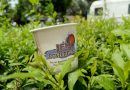 Advertisements on Coffee Cups-Brand Promotional Campaign-gingercup
